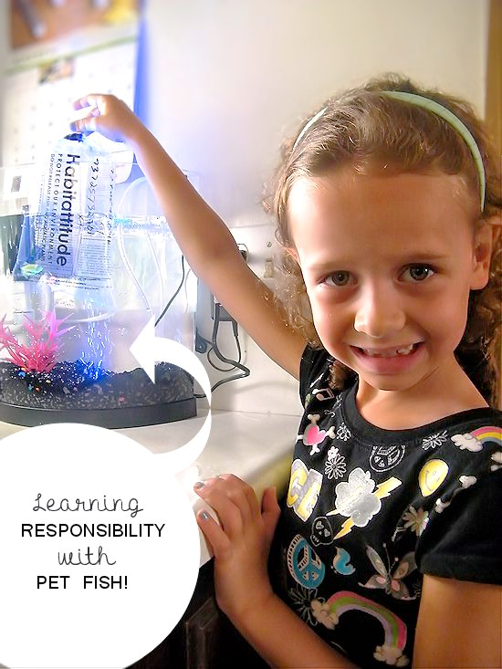 Learning Responsibility with Our New Pet Fish #sponsored