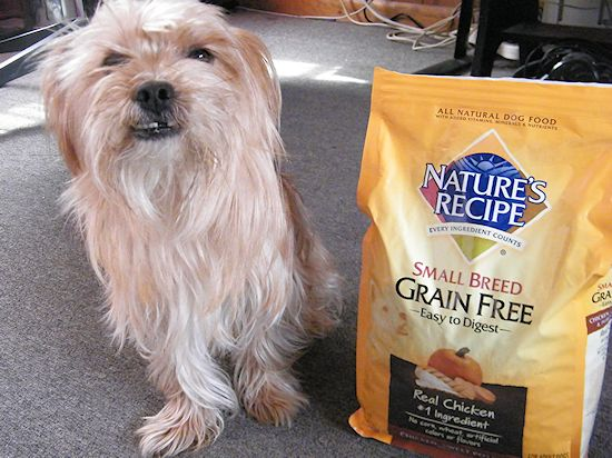 DIY Dog Command Center #NutritionWorthWaggingFor #ad
