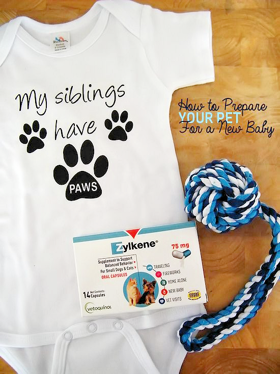 How to Prepare Your Pet for a New Baby #ZylkeneDifference #MyHappyPets #ad