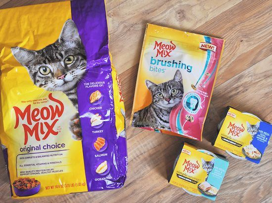 Our Cat Meows for @MeowMix at Meijer & a DIY Cat's Meow Pop Up Paper Card Valentine's Day Craft #MeowMix (ad)