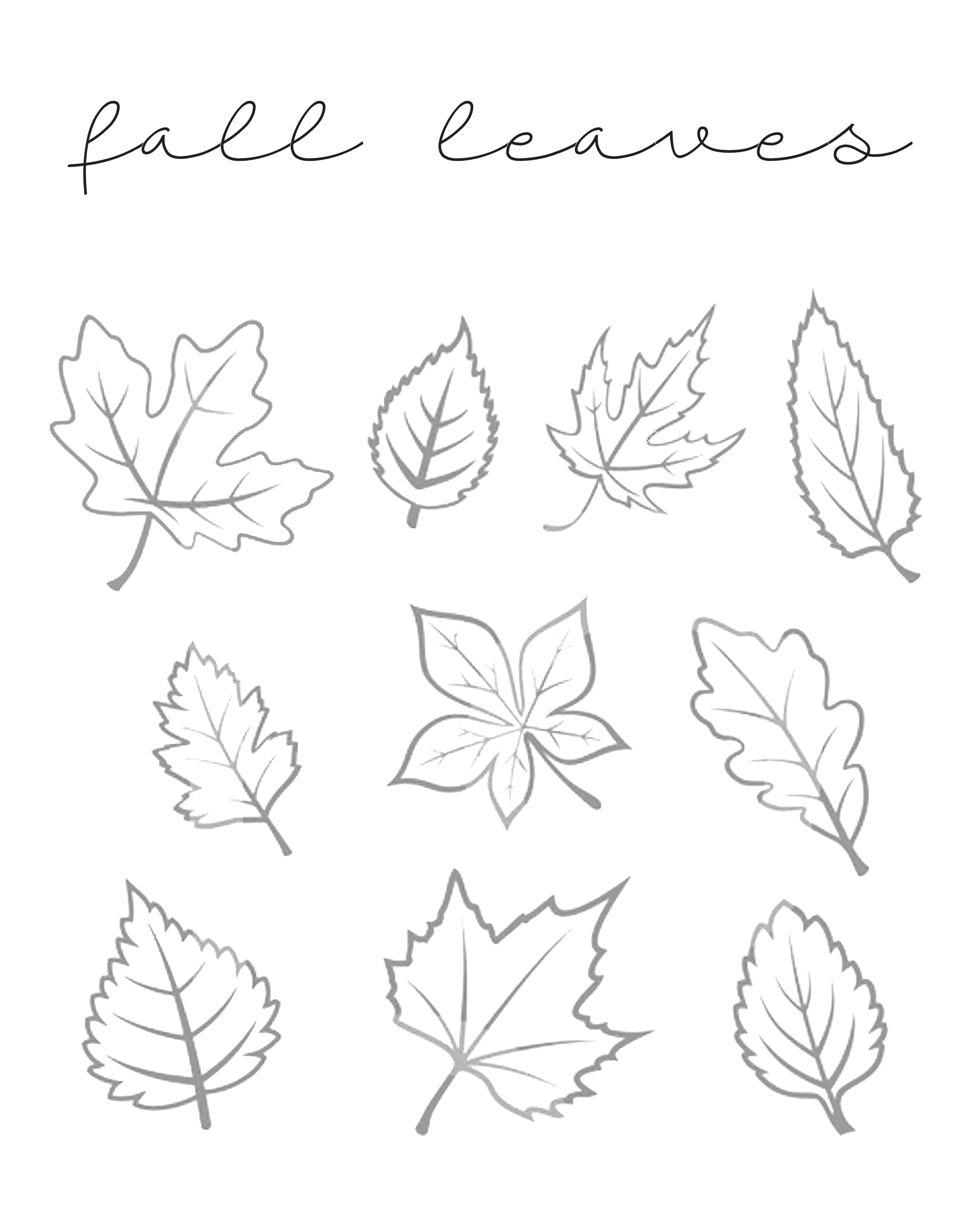 It's just a picture of Tactueux Fall Leaf Printable