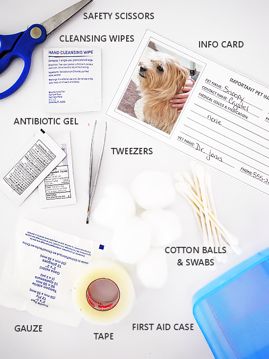 photo regarding First Aid Cards Printable named Puppy Articles Playing cards Printable Our Baby Elements